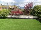 terrazza-radici.jpg